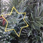 Test Star on Tree